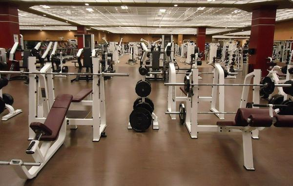 profesjonalne sprzęty na siłownię